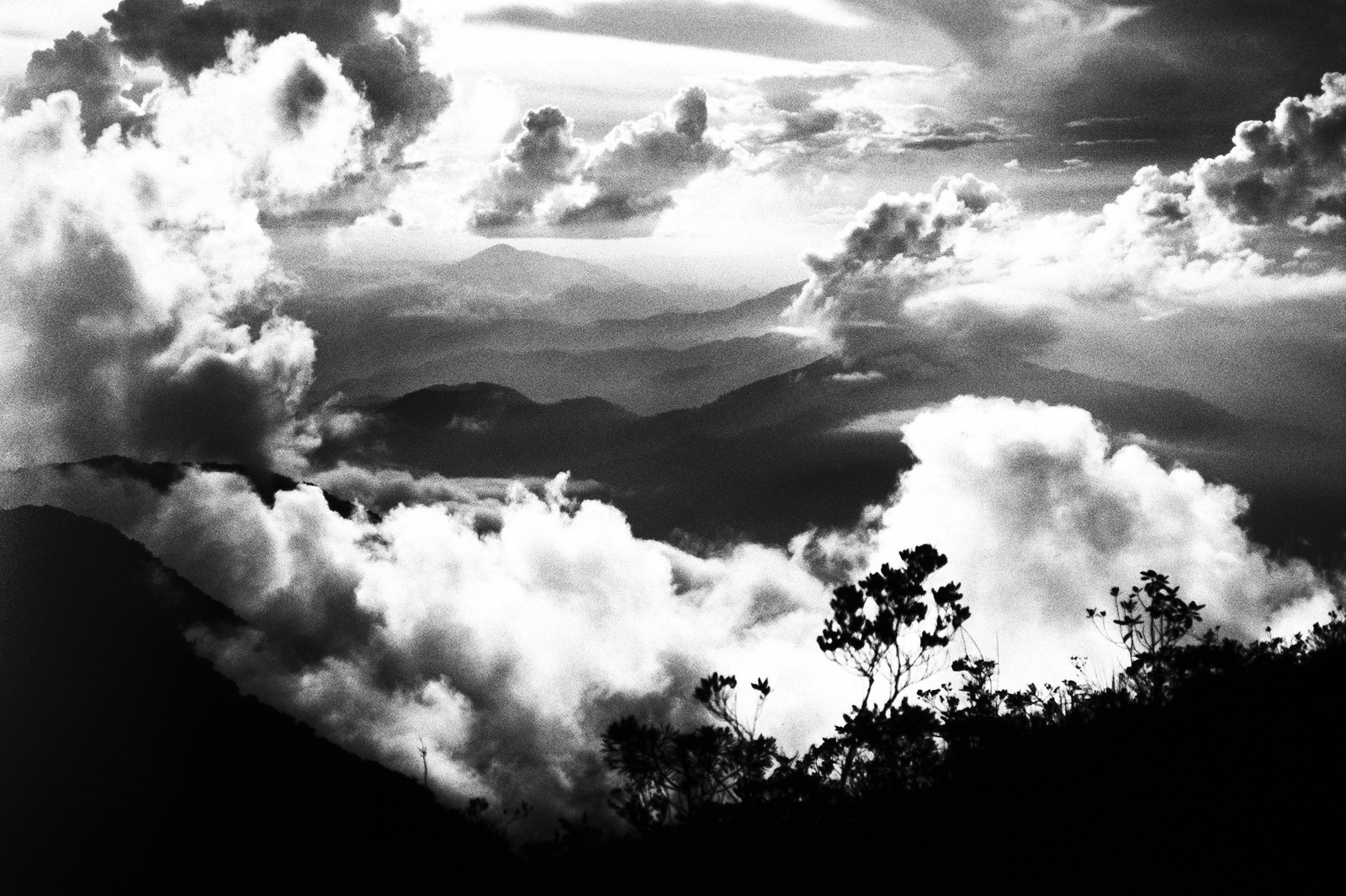Gunung Tahan mountain scenery